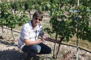 graham with vine